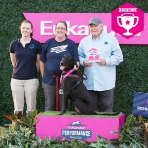 Judd wins at First Annual Eukanuba Performance Games