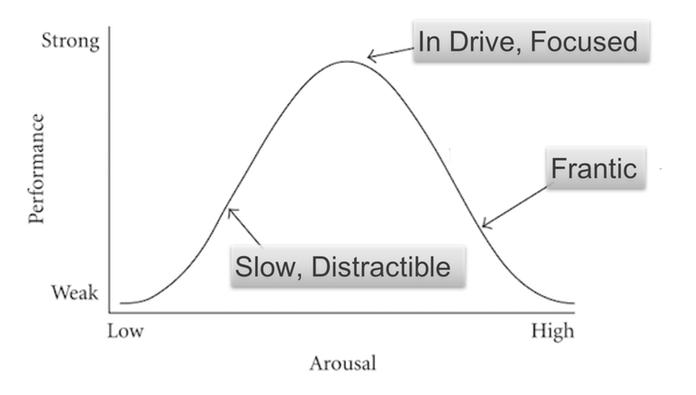 Yerkes-Dodson Law Diagram